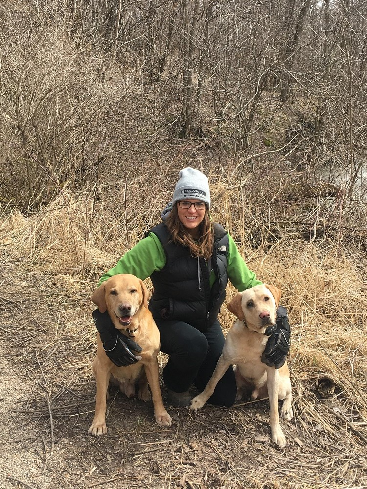 hiking-with-dogs