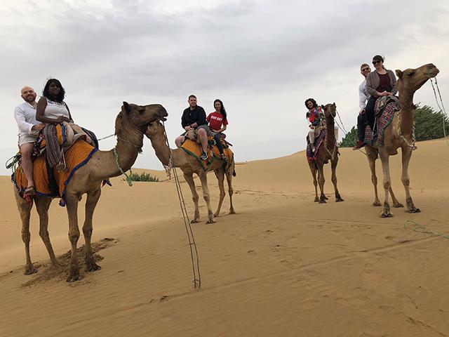 07_camelrideindia